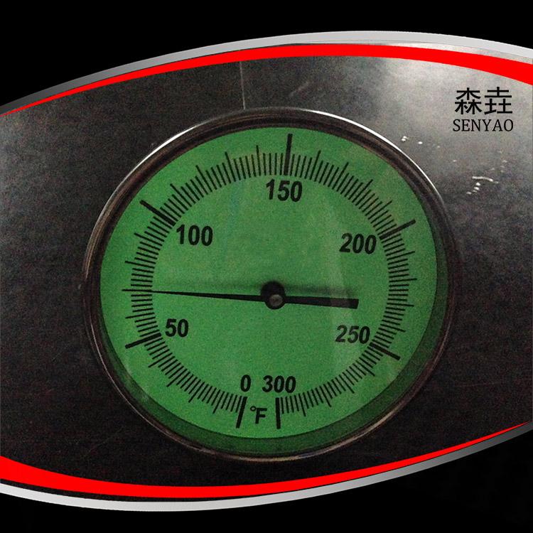 夜光可视双金属温度计 型号:T300GD