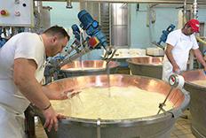 奶酪用数字显示电子温度计成功案例