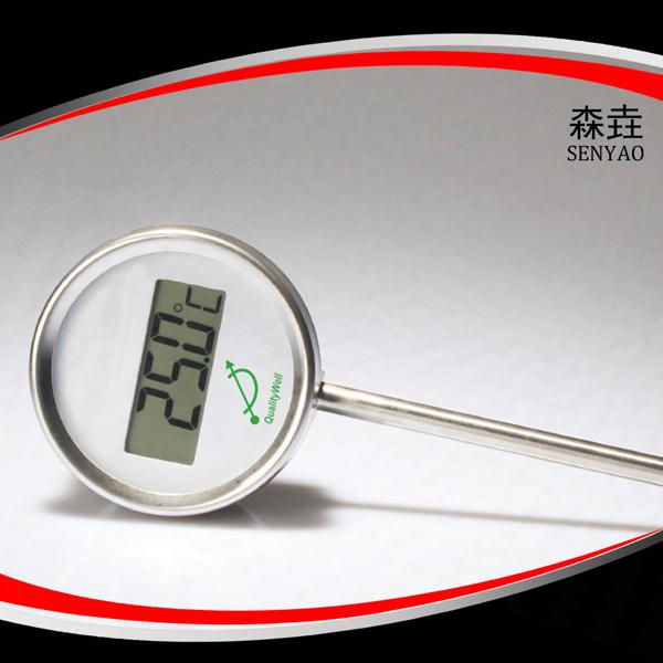 径向全不锈钢电子温度计 型号:DGTI300