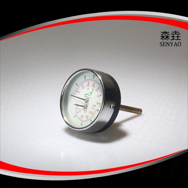 温度压力一体表  型号:WHT-13