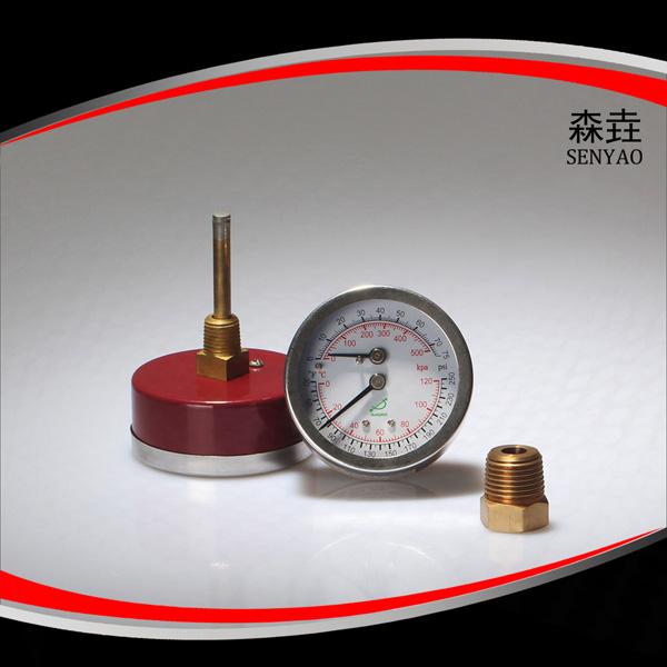 温度压力一体表 型号:WHT-5