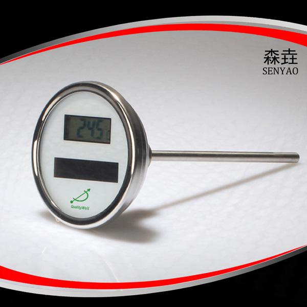 轴向太阳能电子温度计 型号:DSTT300