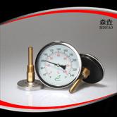 热水锅炉用温度计 型号:H221C