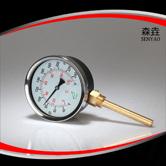 热水锅炉用径向温度计 型号:I400H