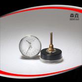 温度压力一体表 型号:WHT-1B