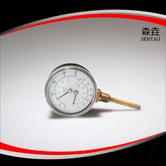 温度压力一体表 型号:WHT-1I