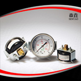 轴向带U型夹压力表 型号:EPG221DHUCG