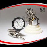 压力式温度计 型号:200RF21121
