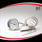 压力式温度计 型号:200RF23022