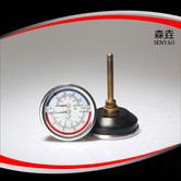 温度压力一体表 型号:WHT-6