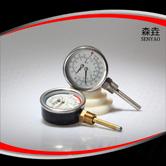 温度压力一体表  型号:WHT-7