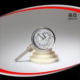 温度压力一体表  型号:WHT-7S