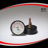温度压力一体表  型号:WHT-12S