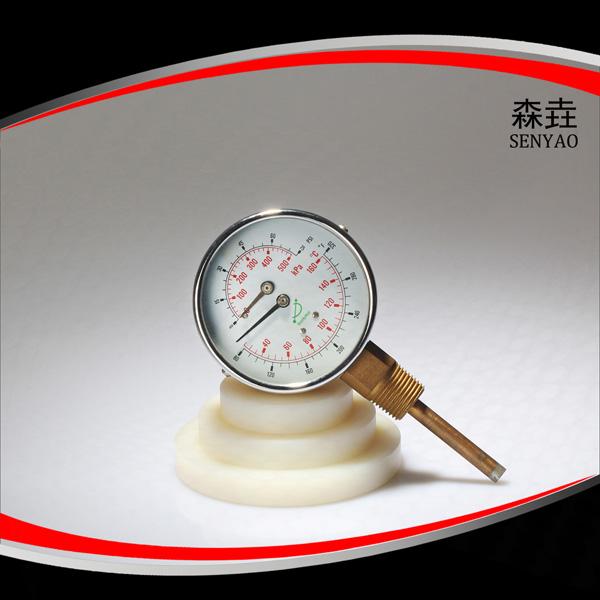 温度压力一体表  型号:WHT-13I