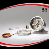 电接点双金属温度计 型号:BWPK-802