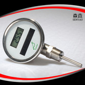径向太阳能电子温度计 型号:DSTI300