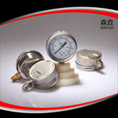 过程压力表 型号:PG400B(A)VNDGD