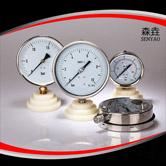 径向充油压力表 型号:PG600A(B)VNEGT