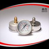 轴向充油压力表  型号:PG221A(B)HNCGD
