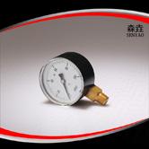 径向微压表 型号:221LVDAN