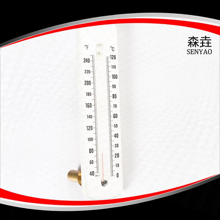 热水炉玻璃温度计 型号:HG200B