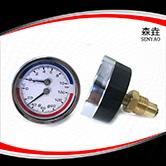 温度压力一体表  型号:WHT-19