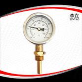 热水锅炉用径向温度计 型号:I221H